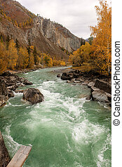 rapid river in autumn mountains