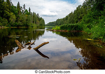 Landscape with river, forest and blue sky. - Summer...