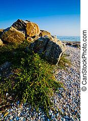 Landscape with Sea of Azov - Shore landscape at the Sea of...