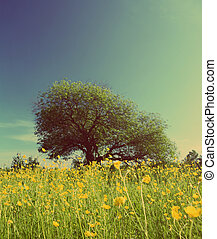 tree on buttercups meadow - vintage retro style