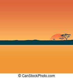Landscape with sunset in desert.