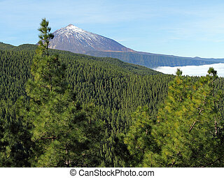 landscape with Teide volcano, Tenerife, Canary Islands