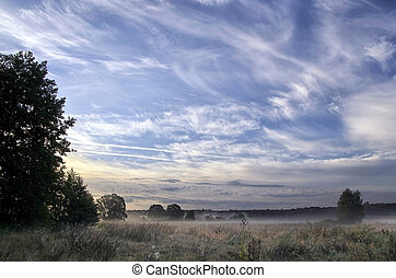 Landscape with the morning mist