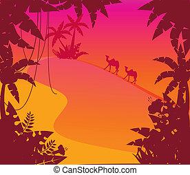 Landscape with tropical plants