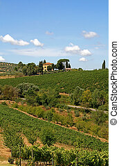 Landscape with vineyard in the Tuscany, Italy