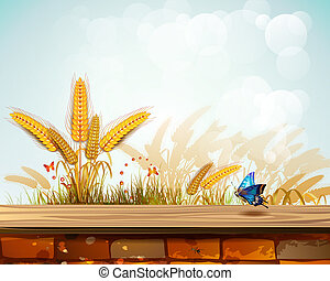 Landscape with wheat