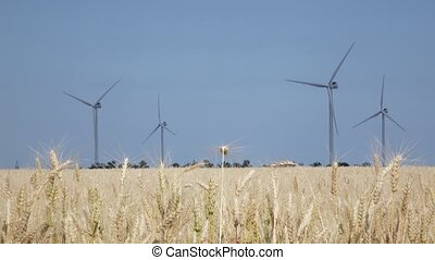 Landscape with windmills and yellow wheat in clear sunny...
