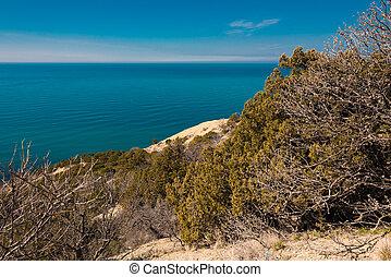 landscape, zee