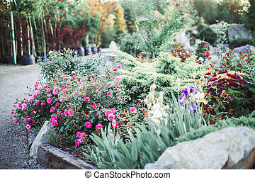 landscaped garden with flowerbed and colorful plants along path