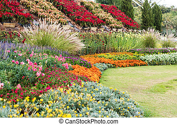 Landscaped garden with flowerbed and colorful plants