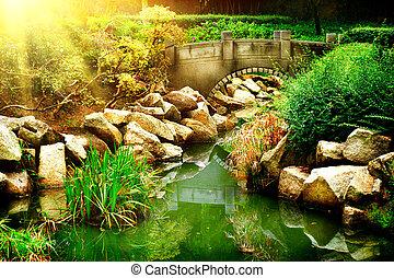 Landscaped Garden with Pond. Park Landscape