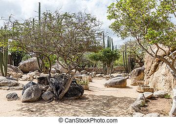 Landscaped Rock Garden in Aruba