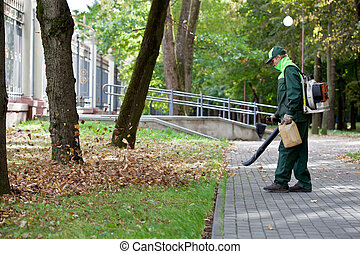 Landscaper operating gas Leaf Blowe - Landscaper operating...