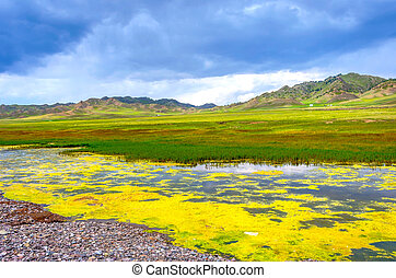 Landscapes at Sayram Lake, China - Landscape at Sayram lake,...