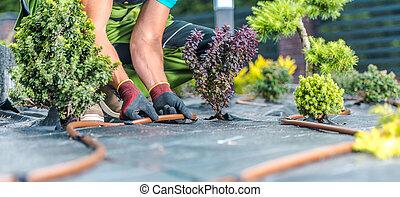 Modern Garden Irrigation System Building