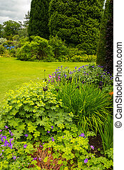 landscaping, jardin
