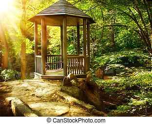 landscaping, park., tonnelle, automnal