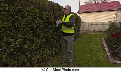 Landscaping worker checking bush hedge