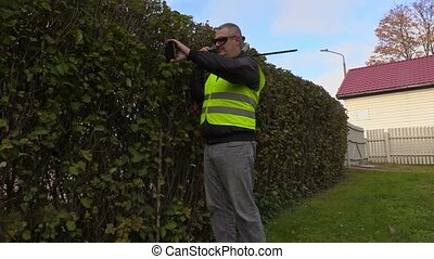 Landscaping worker take pictures of bush hedge