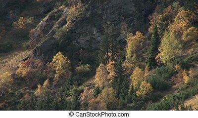 Landscaps, Alps, Austria
