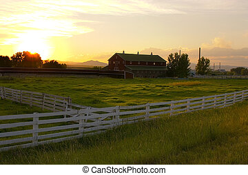 landschaft, führen, ranch, zaun