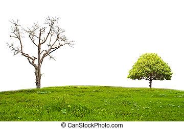 landschaft, freigestellt