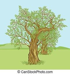 Landschaft mit Olivenbaum.eps