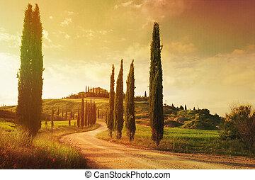 landschaft, weinlese, kunst, toscana, landschaftsbild