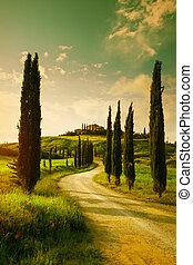 landschaft, weinlese, toscana, landschaftsbild