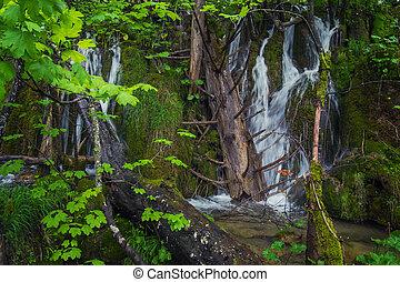 landschaftlich, klar, bäume, tiefes wasser, kristall, wasserfall, ströme, wald, moos, stones., gefallen