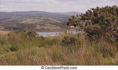 landschaftlich, landschaften, von, irland