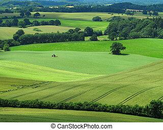 landschaftsbild, agrarisch, traktor