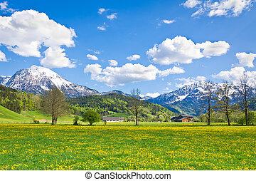 landschaftsbild, alpin