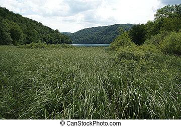 landschaftsbild, bestehen, von, berge, und, lake., der, plitvice, seen, nationalpark, in, kroatien