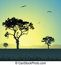 landschaftsbild, mit, bäume