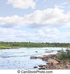 landschaftsbild, mit, wald, fluß