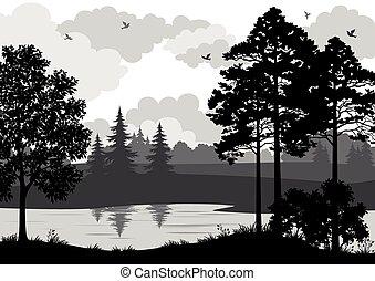 landschaftsbild, silhouette, fluß, bäume, vögel
