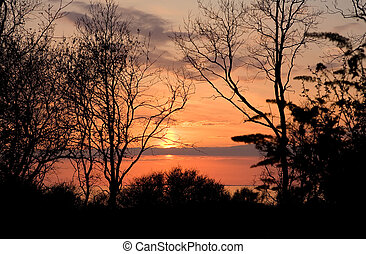 landschaftsbild, -, sonnenuntergang, früh, fruehjahr