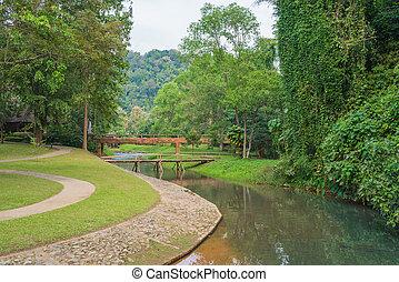 landschaftsbild, von, bahn, in, der, schöne , kleingarten, an, nation, park