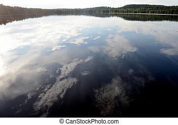 landschaftsbild, von, der, waldsee, in, sommer