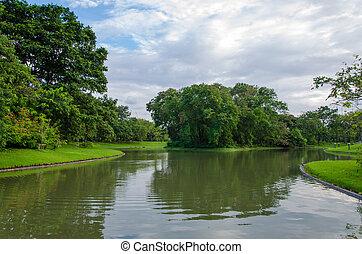 landschaftsbild, von, see, in, der, fruehjahr, park