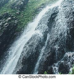 landschap, natuurlijke , schilderachtig, bos, waterval, landscape