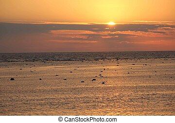 landschap, ondergaande zon , zee