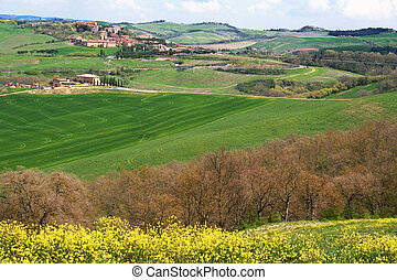 landschap., tuscany, val, italy., gebied, d\'orcia, valley.