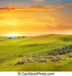 landschap, velden, heuvels, en, zonopkomst