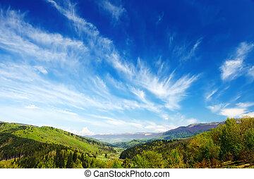 landskab, grønne, carpathians, skov, bjerge