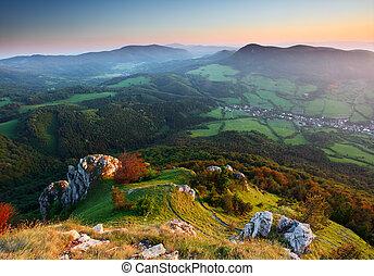landskab., grønnes skov, bjerge