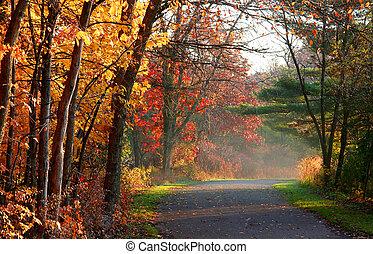 landskabelig, efterår, vej