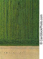 landskabelig, landbrugs-, fields., antenne, udsigter.