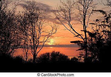 landskap, -, solnedgång, tidigt, fjäder